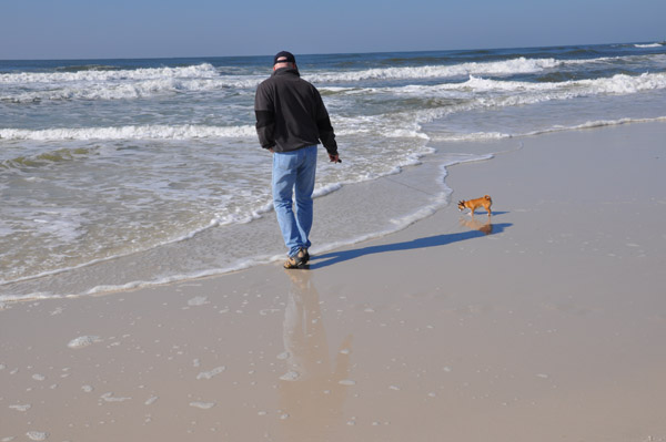 Little Dog, Big Ocean