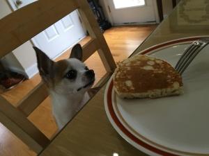 Ebby on Pancake Day